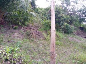 Half Plot of Land   Land & Plots For Sale for sale in Ibeju, Igando-Oloja