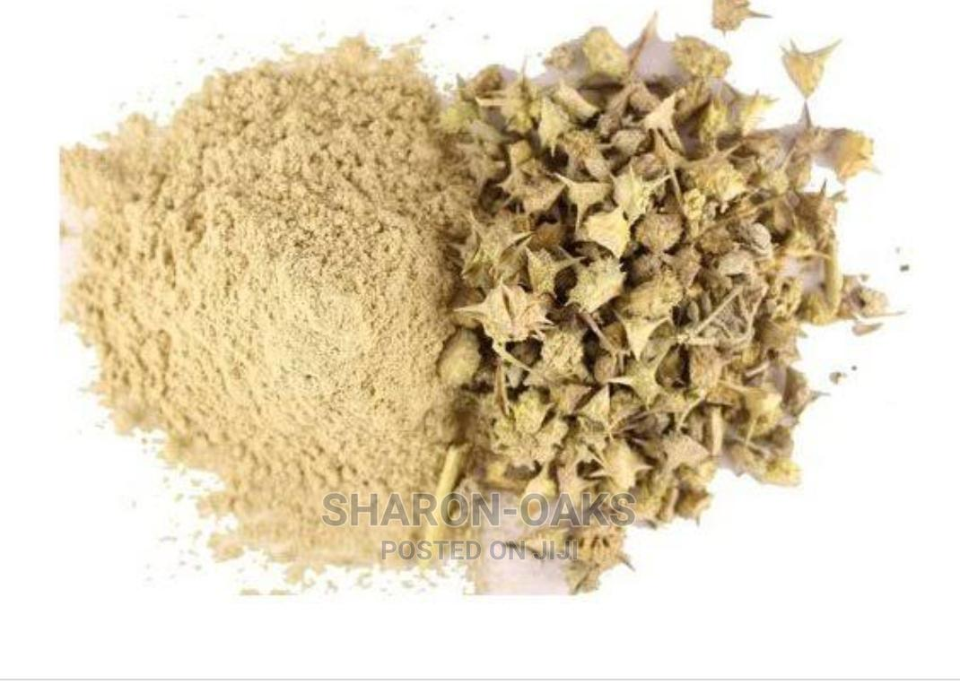 Tribulus Terrestris Powder | Feeds, Supplements & Seeds for sale in Port-Harcourt, Rivers State, Nigeria