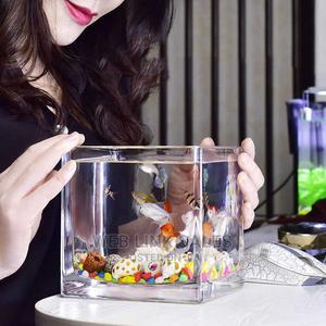 Mini Table Nature Aquarium | Fish for sale in Lagos State, Surulere