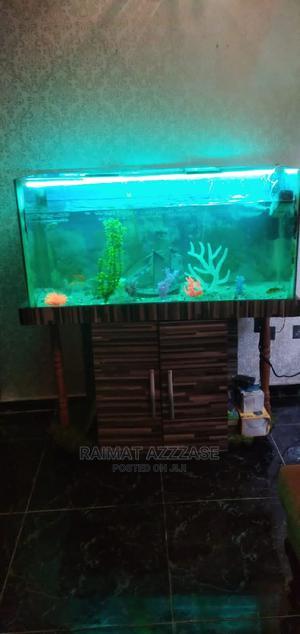 Aquarium Fish Tank | Fish for sale in Lagos State, Surulere