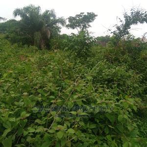 Plot of Land Within Apete, Lifelort Area. Ibadan, Oyo Ibadan | Land & Plots For Sale for sale in Oyo State, Ibadan