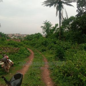 Land for Sale Within Apete, Ibadan, Oyo State, Nigeria | Land & Plots For Sale for sale in Oyo State, Ibadan