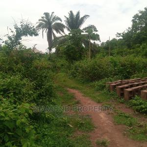 Many Plot of Land Within Apete, Lifelort,Ibadan,Oyo State. | Land & Plots For Sale for sale in Oyo State, Ibadan
