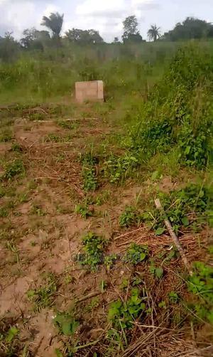 1 Acre Fertile Virgin Farmland for Lease | Land & Plots for Rent for sale in Ogun State, Ado-Odo/Ota