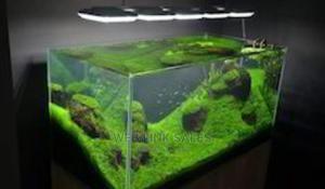 Floor/Table Aquarium Of Various Sizes | Fish for sale in Lagos State, Surulere