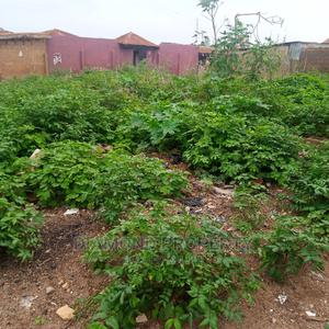 Plot of Land Withi Apete | Land & Plots For Sale for sale in Oyo State, Ibadan