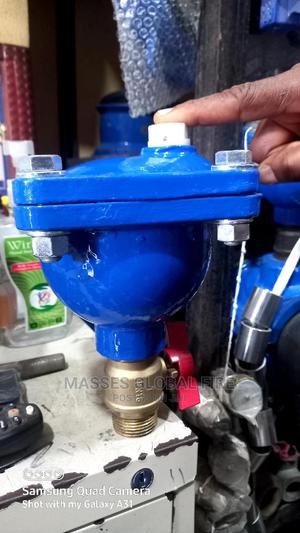 """2 """" Air Release Valve 