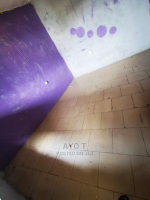 Mini Flat in Ilaje, Bariga / Shomolu for Rent   Houses & Apartments For Rent for sale in Shomolu, Bariga / Shomolu