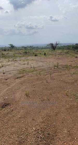 Land For Sale   Land & Plots For Sale for sale in Enugu State, Enugu