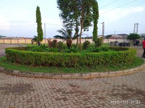 Gardening, Flowering and Horticulture Works of Any Kinds | Landscaping & Gardening Services for sale in Lagos State, Alimosho