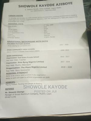 Logistics Transportation CV | Logistics & Transportation CVs for sale in Lagos State, Surulere