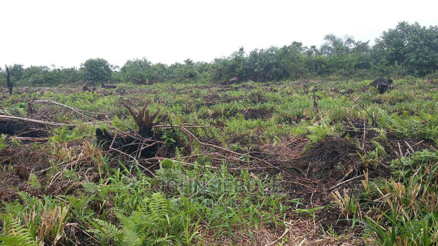Plots of Land for Sale | Land & Plots For Sale for sale in Lekki, Lagos State, Nigeria