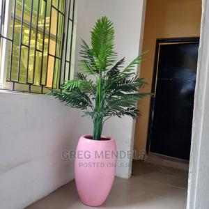 Ideal Palm Plant With Pink Fibre Glass   Garden for sale in Lagos State, Ikeja