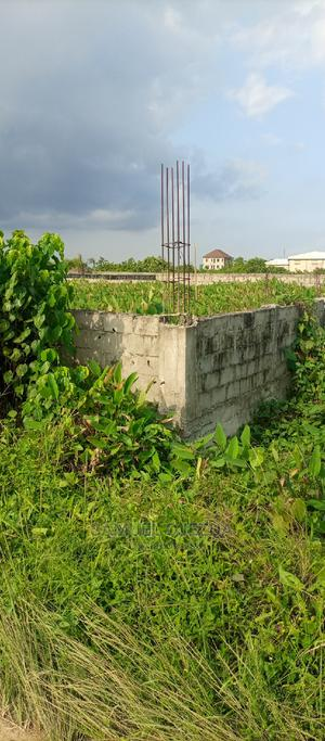 2 Plot at Festac (240*240) Land for Sale | Land & Plots For Sale for sale in Amuwo-Odofin, Festac