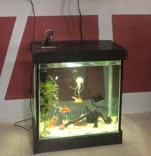 Exotic Wall Front Aquariums | Fish for sale in Lagos State, Yaba