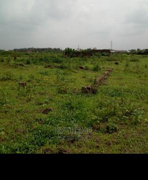 I Plot of Land for Sale   Land & Plots For Sale for sale in Enugu State, Enugu