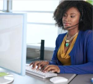 Customer Service Executive | Customer Service CVs for sale in Lagos State, Isolo
