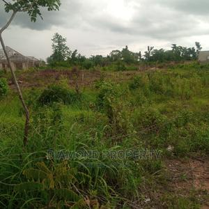 Not Issue Land, Genue Lands. | Land & Plots For Sale for sale in Oyo State, Ibadan