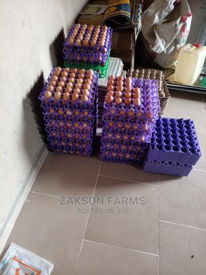 Whole Sale Eggs in Bulk   Livestock & Poultry for sale in Kano State, Kumbotso
