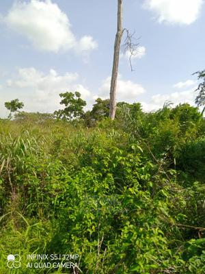 Farm Land (Acre) | Land & Plots For Sale for sale in Kwara State, Ilorin West