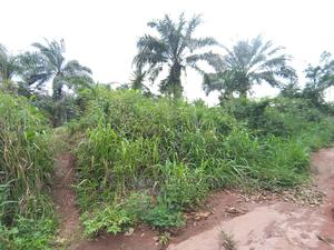 Land at Target   Land & Plots For Sale for sale in Imo State, Ikeduru