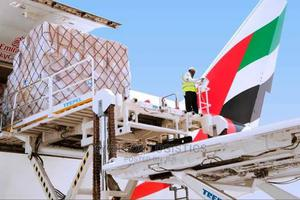 Nigeria to Azerbaijan Door to Door Delivery | Logistics Services for sale in Lagos State, Ikeja