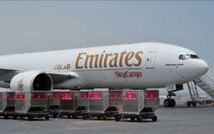 Nigeria to Qatar Door to Door Delivery | Logistics Services for sale in Lagos State, Ikeja