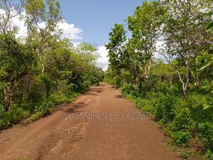 568 Acres of Farm Landed Property for Sale   Land & Plots For Sale for sale in Ogun State, Abeokuta North