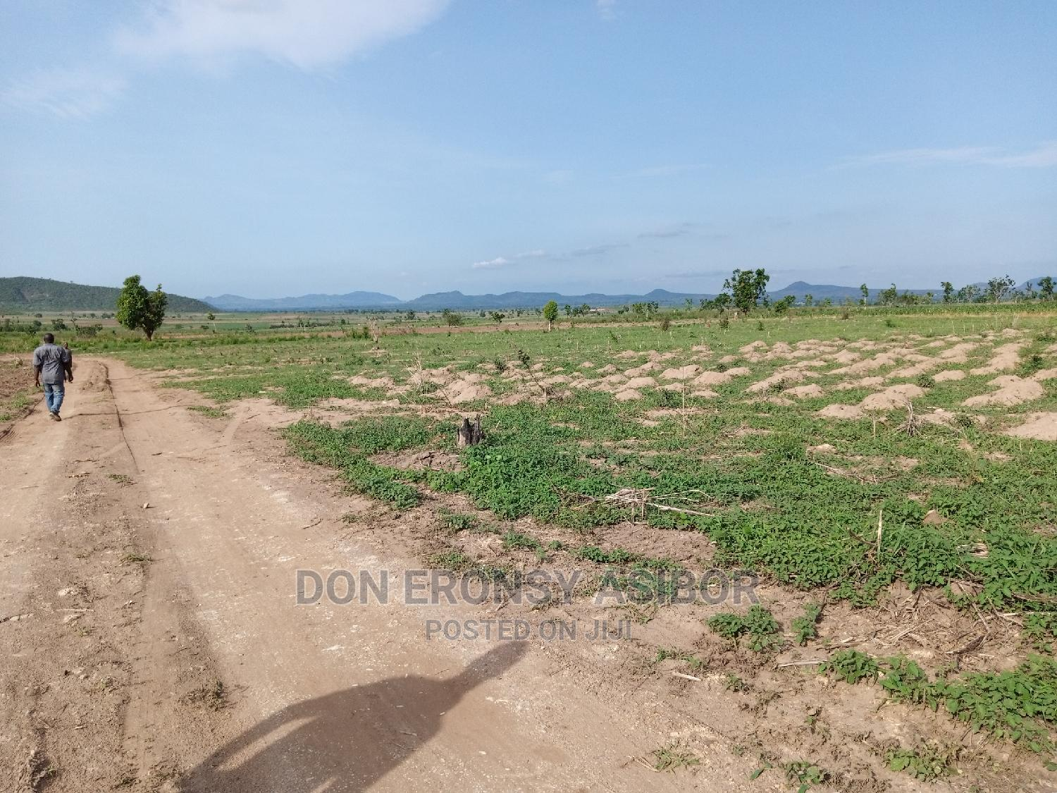 Archive: Hectares of Land for Lease
