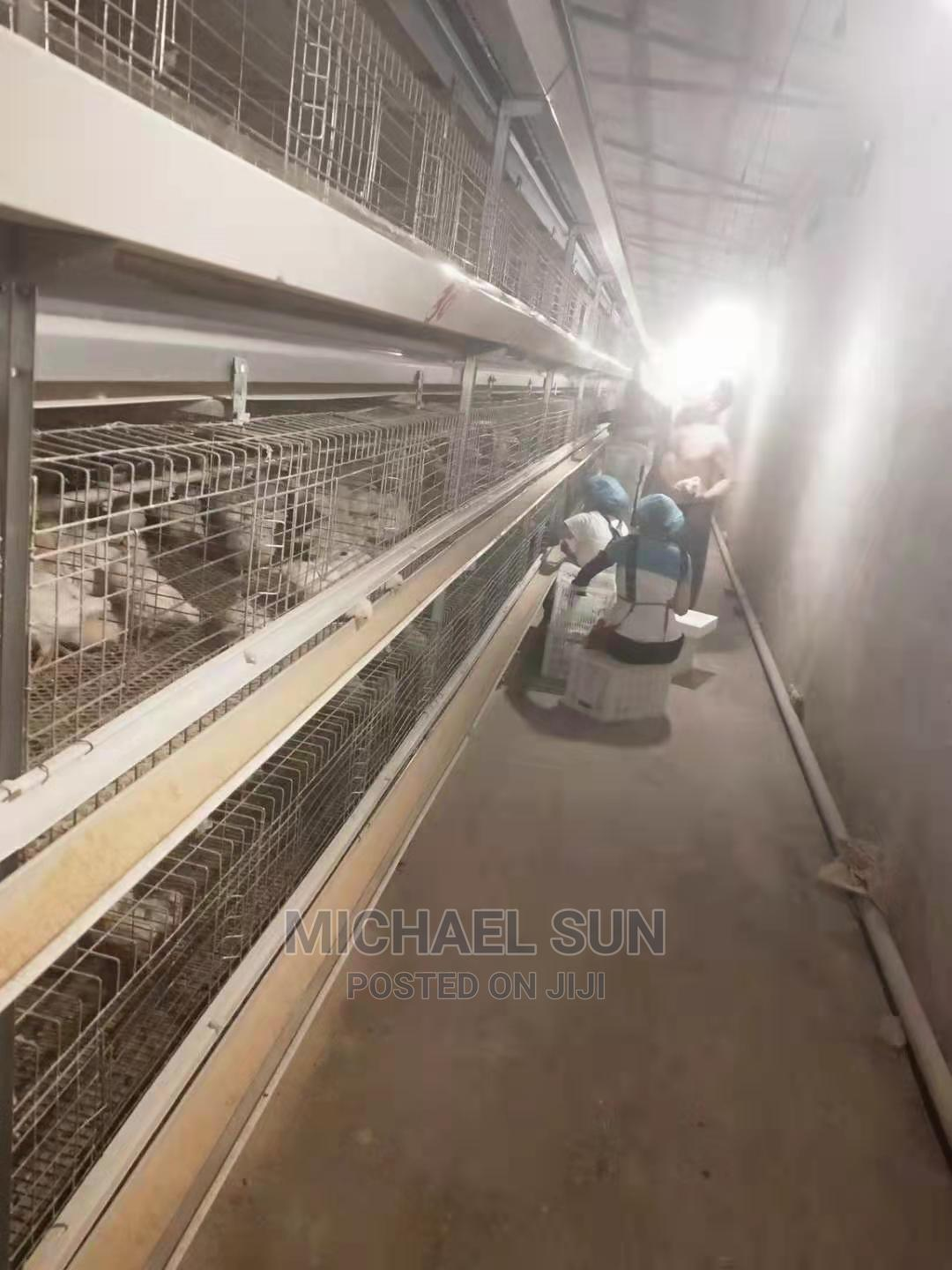 Best Quality Poultry Cage | Farm Machinery & Equipment for sale in Ifo, Ogun State, Nigeria