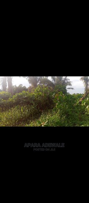 A Plot of Land   Land & Plots For Sale for sale in Badagry, Oko Afo