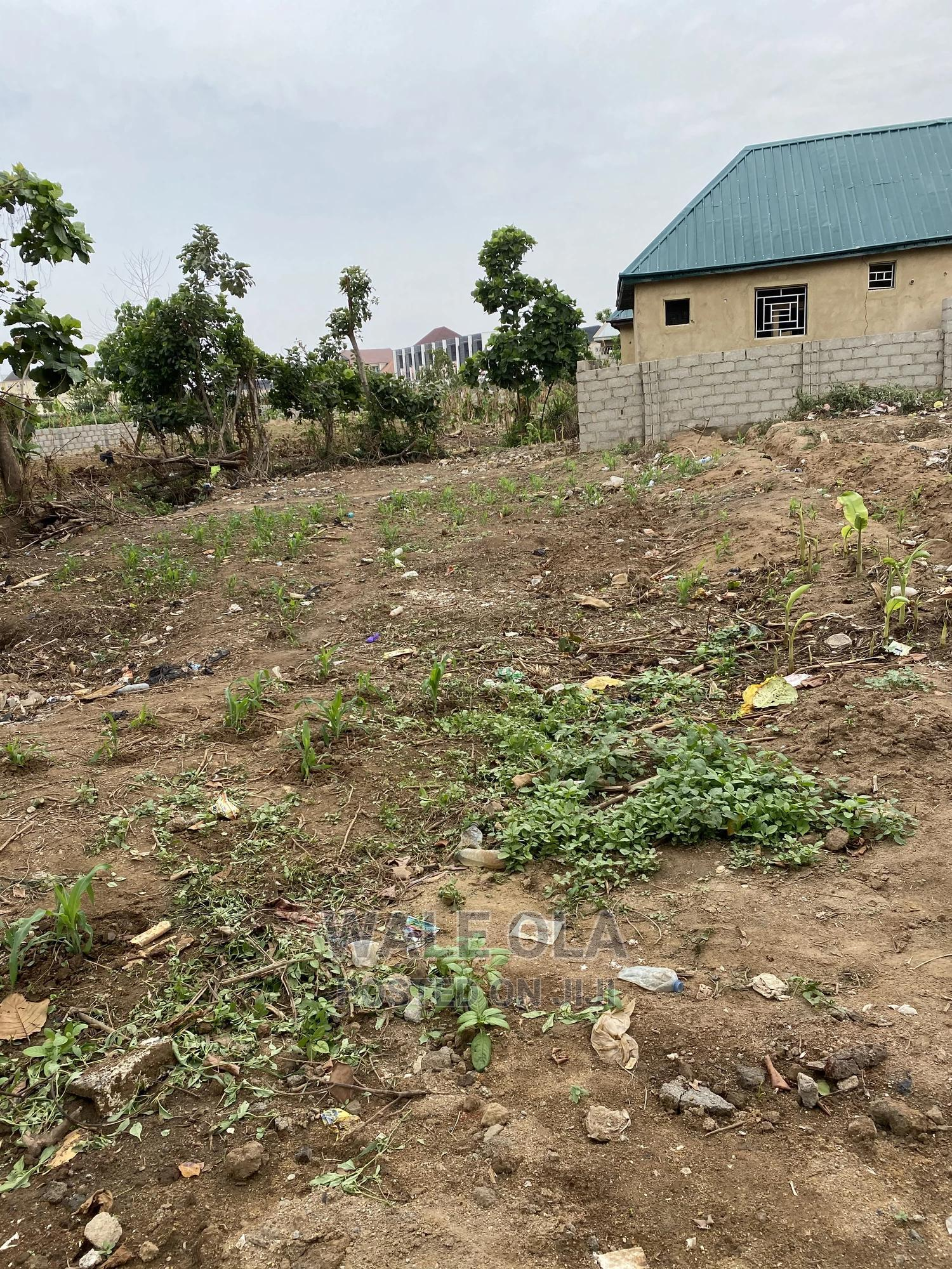 Clean Land for Rent