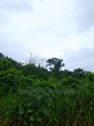 1 Acre of Land   Land & Plots For Sale for sale in Ibadan, Moniya