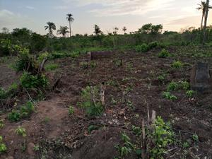 1 Acre of Land for Sale   Land & Plots For Sale for sale in Ogun State, Obafemi-Owode