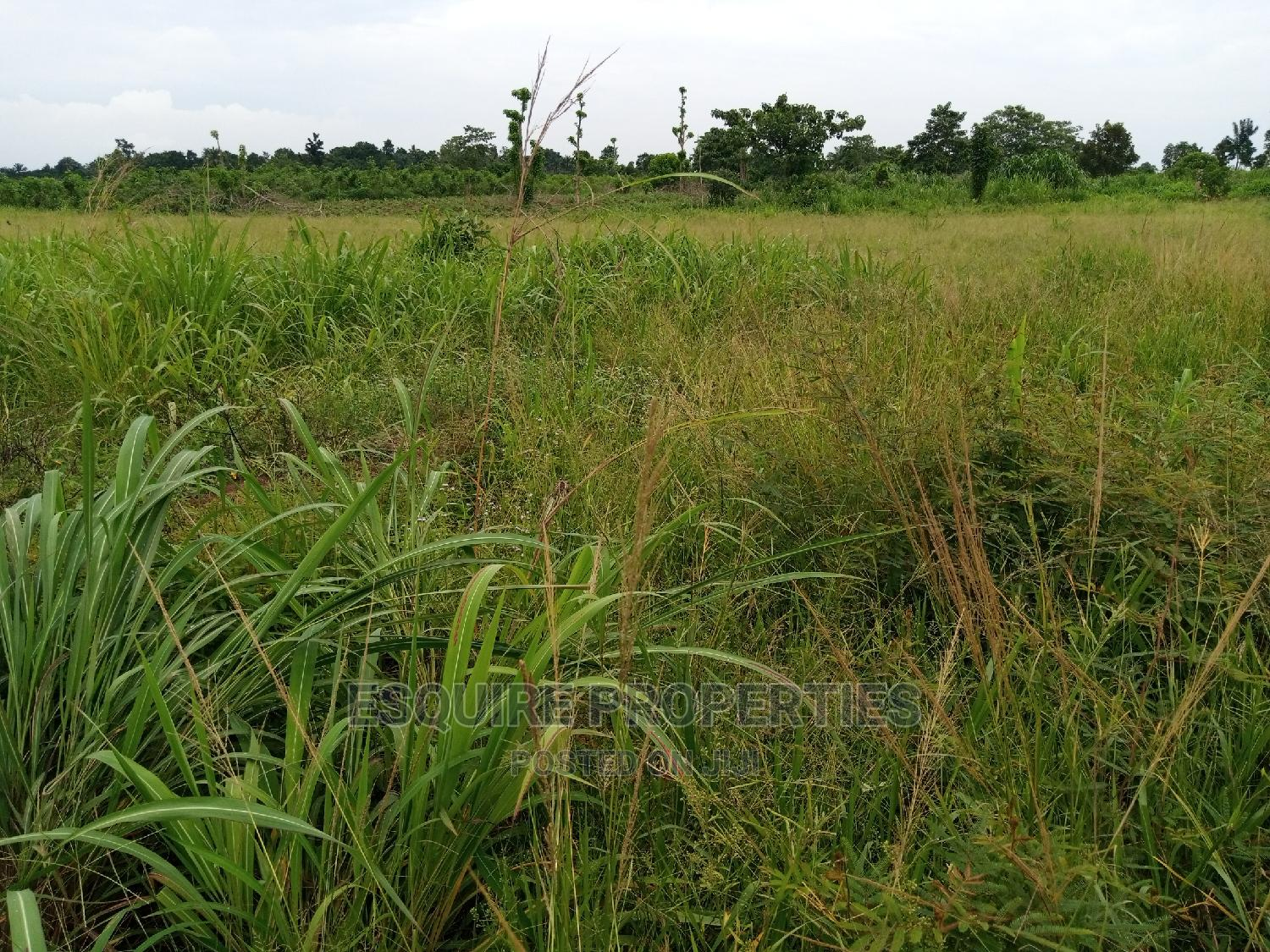 4plot of Land for Lease at Ibagwa Nike