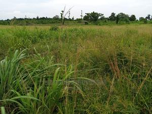 4plot of Land for Lease at Ibagwa Nike | Land & Plots for Rent for sale in Enugu State, Enugu