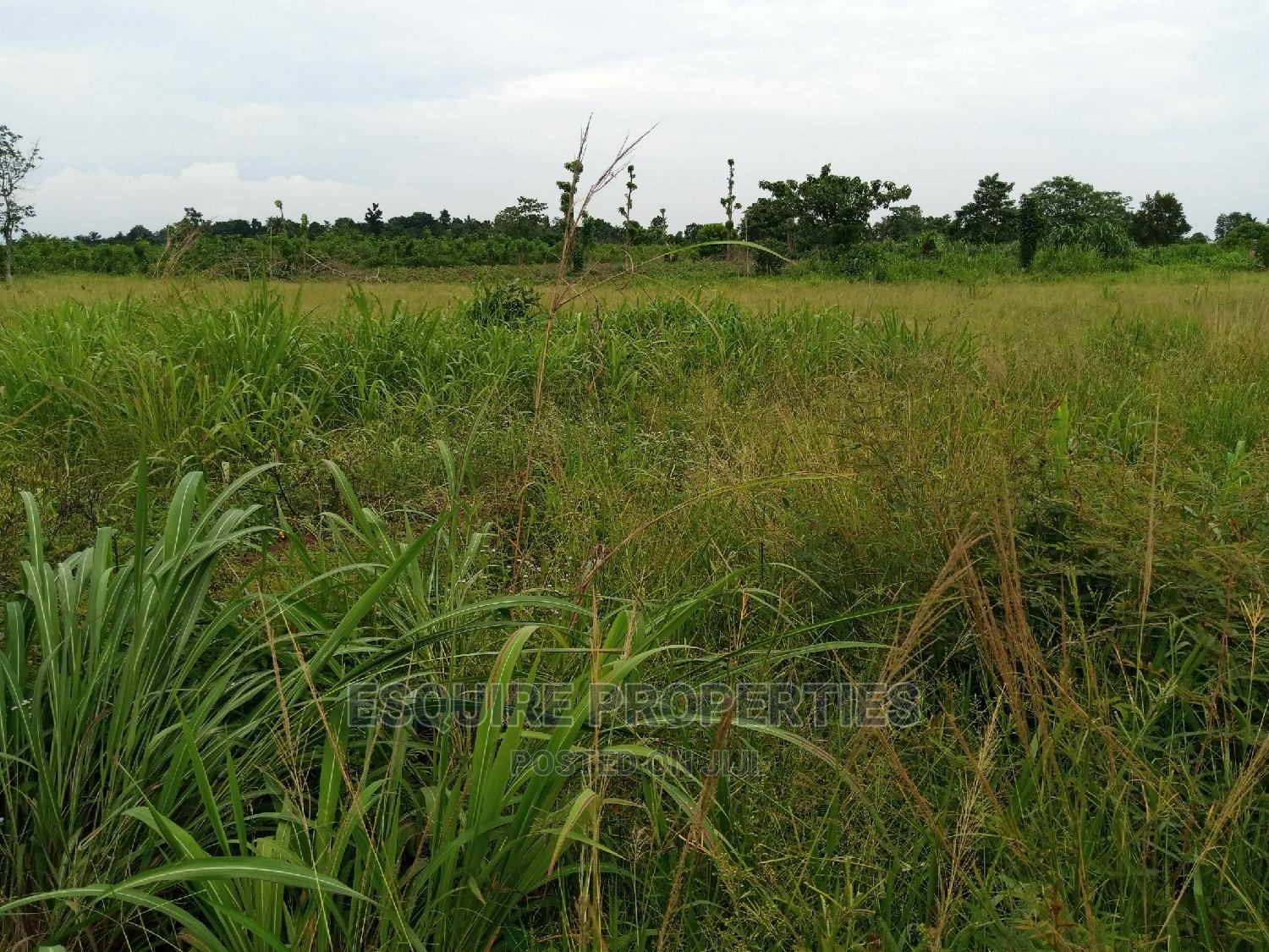 4plot of Land for Lease at Ibagwa Nike | Land & Plots for Rent for sale in Enugu, Enugu State, Nigeria