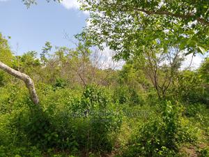Buy 600 Acres of Farm Landed Property   Land & Plots For Sale for sale in Ogun State, Ayetoro