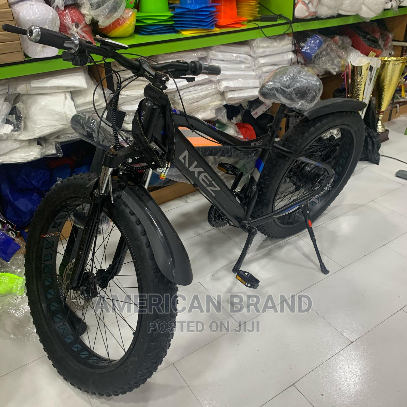 Brand New Fat Tire Electric Bicycle With LED Display