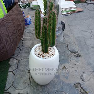 Artificial Fiber Cactus Plant for Sale | Garden for sale in Lagos State, Ikeja