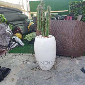 Avialable/Adorable Artificial Cactus Fiber Plant for Sale | Garden for sale in Lagos State, Ikeja