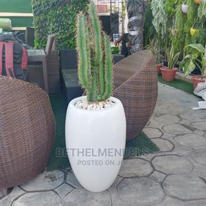 Potted Artificial Cactus Plant for Sale | Garden for sale in Lagos State, Ikeja