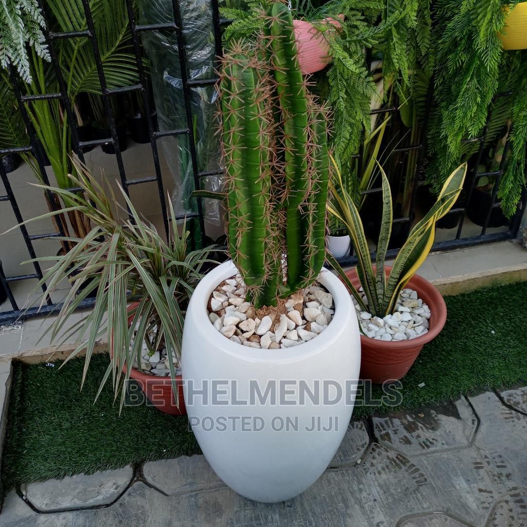 Artificial Cactus Plant for Sale
