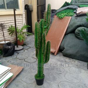 Artificial Cactus Plant for Sale | Garden for sale in Lagos State, Ikeja