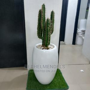 Artificial Cactus Potted Fiber Plant for Sale | Garden for sale in Lagos State, Ikeja