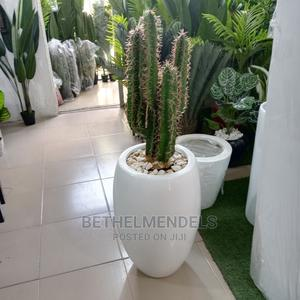 Amazing Artificial Potted Cactus Plant for Sale   Garden for sale in Lagos State, Ikeja