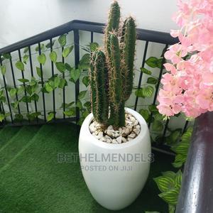 Artificial Cactus Plant for Interor Decor | Garden for sale in Lagos State, Ikeja
