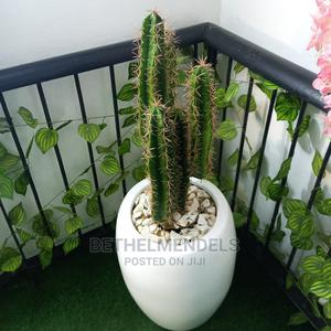 Artificial Potted Fiber Cactus Plant for Sale | Garden for sale in Lagos State, Ikeja