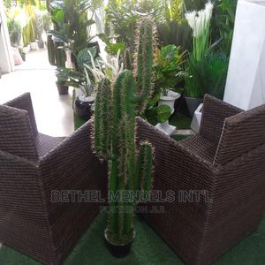 Gorgeously Constructed Artificial Cactus Plant for Sale | Garden for sale in Lagos State, Ikeja
