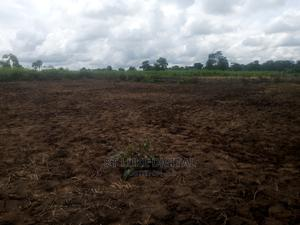 PFN Estate   Land & Plots For Sale for sale in Anambra State, Awka